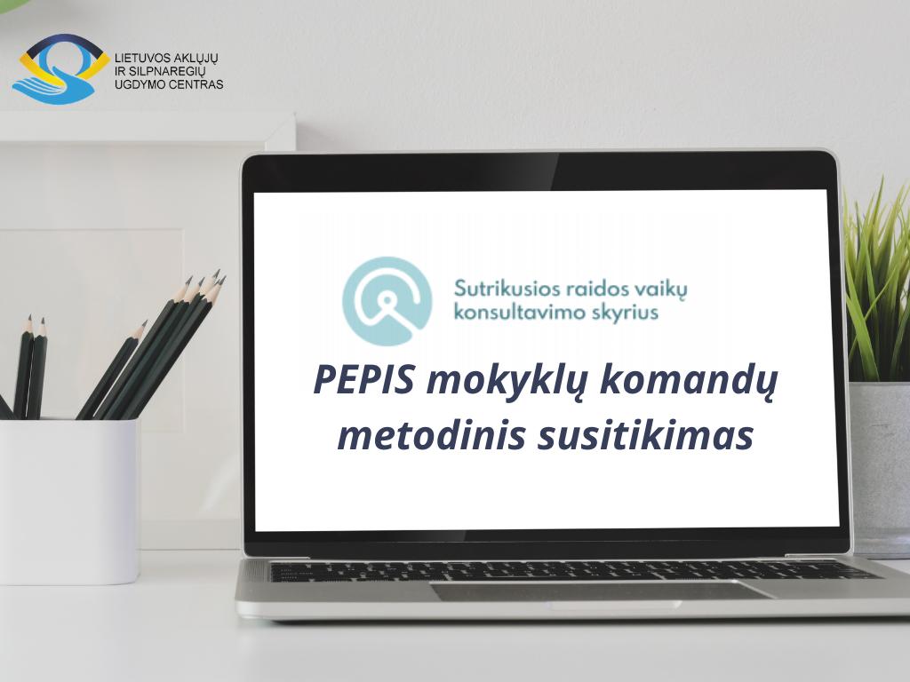 PEPIS mokyklų komandų metodinis susitikimas